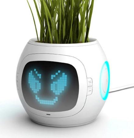 digitaler Blumentopf