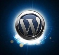 wordpress-logo-shine