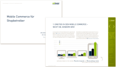 Whitepaper Mobile Commerce