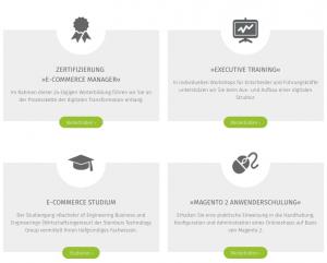 Angebote der Digital Business School Screenshot: DBS
