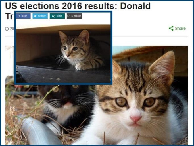 Collage gemacht von Neuiheiten über Donald Trump mit Plug-IN hingefügt