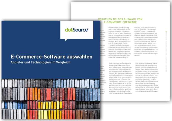 E-Commerce-Software auswählen