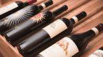 Case-Study Mövenpick Wein – Design trifft Genuss