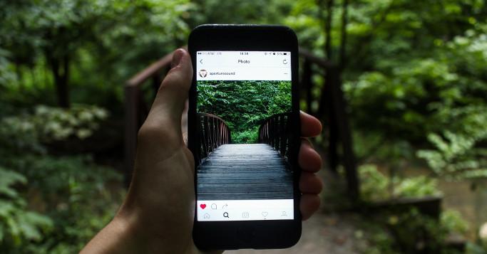 Instagram Foto von Brücke im Wald