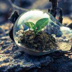 Netzfund: »Das Internet of Seeds«