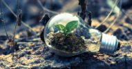 Digitalisierung und Umweltschutz? So sorgen technologische Innovationen für mehr Nachhaltigkeit