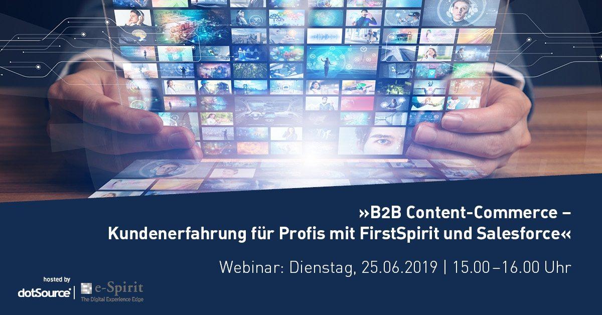 »B2B Content-Commerce – Kundenerfahrung für Profis mit FirstSpirit und Salesforce« [Last Call]
