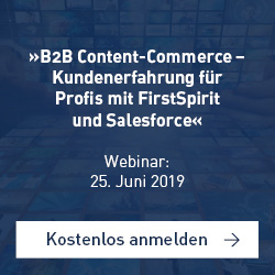Webinar B2B Content-Commerce