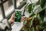 Der smarte »Grüne Daumen« [Netzfund]