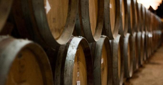 Alte Whisky Fässer in einem Keller
