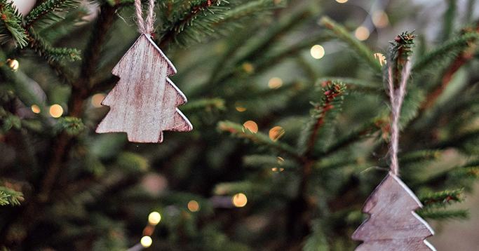 Weihnachten mit nachhaltigen Weihnachtsbäumen