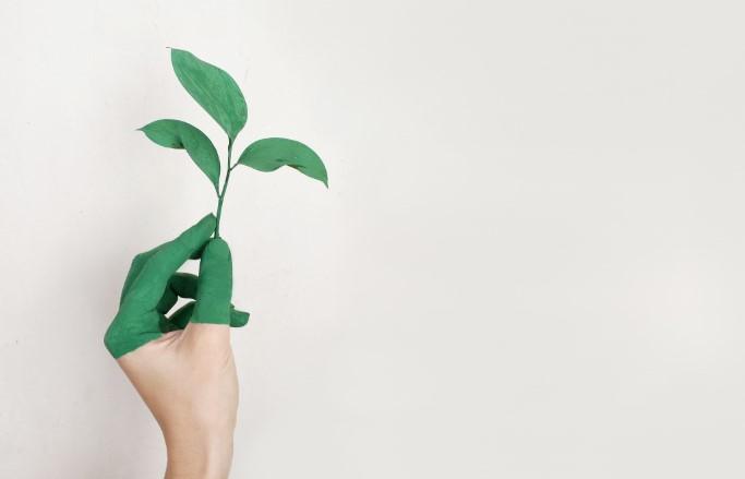 umweltschutz, digitalisierung, nachhaltigkeit, business-strategie