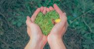 Charity Shopping: Soziales Engagement ist wichtig und wird mit Kundenloyalität belohnt [5 Lesetipps]