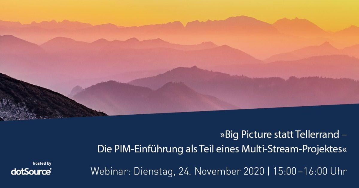»Big Picture statt Tellerrand – Die PIM-Einführung als Teil eines Multi-Stream-Projektes« [Webinar]