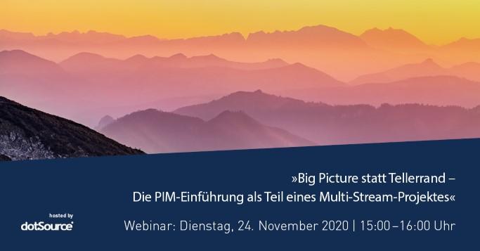 Webinar PIM Multi-Stream-Projekt