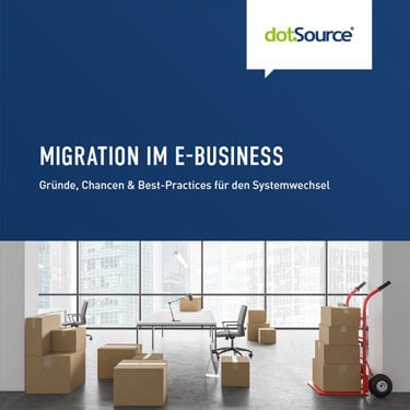 Migration im E-Business Whitepaper
