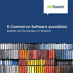 E-Commerce-Software auswählen Whitepaper
