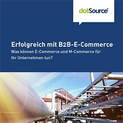 Erfolgreich mit B2B-E-Commerce Whitepaper