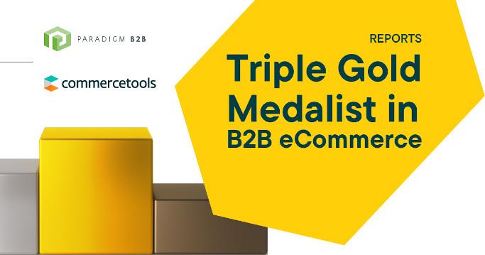 Gold für commercetools dotSource Partner ist B2B-Commerce Champion