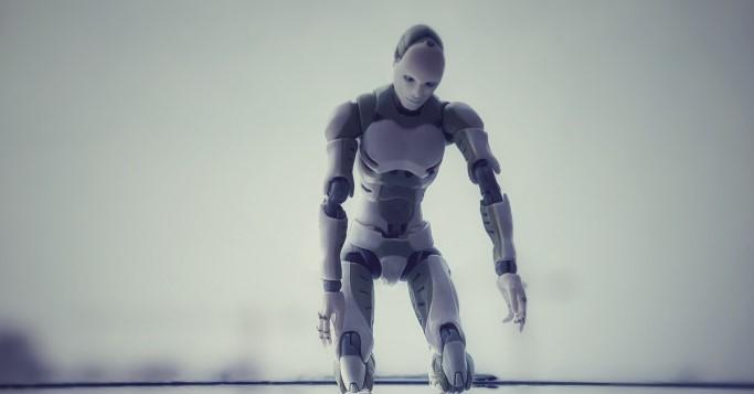 Tesla Bot Mitarbeiter bauen Netzfund