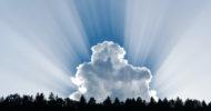 IT-Champion 2021: Wir sind Top in Sachen Cloud-Migration!
