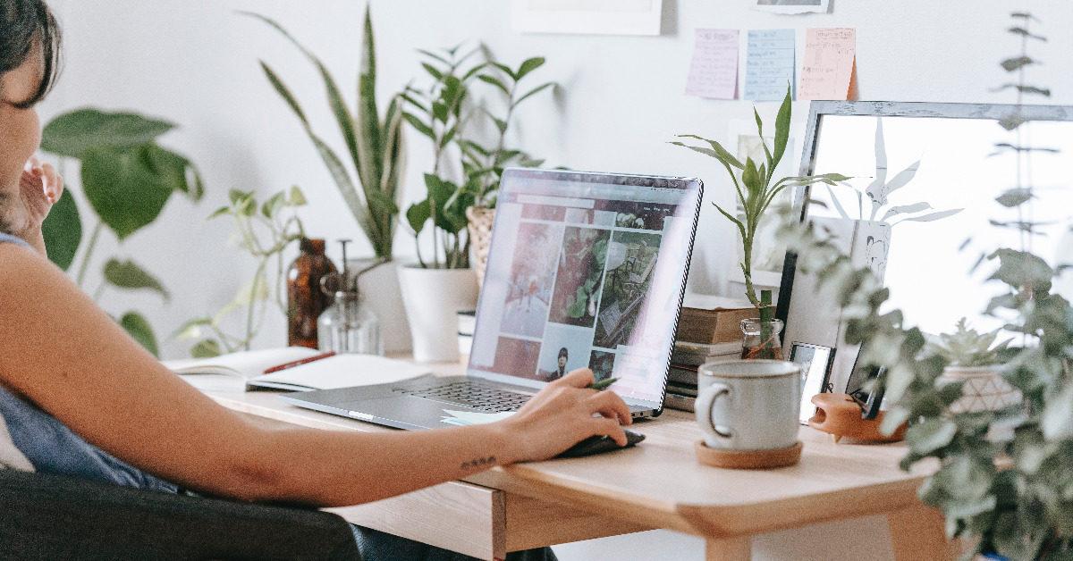 Sustainable Business is digital Business: Wie eure Webseite klimaneutral wird [5 Lesetipps]